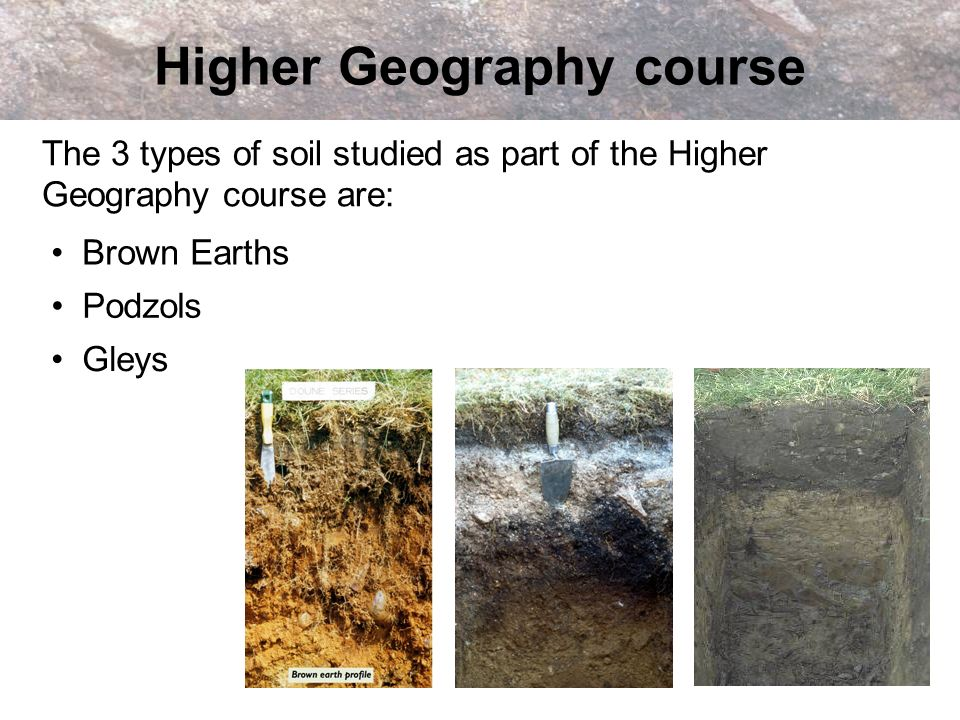 Higher Geography course