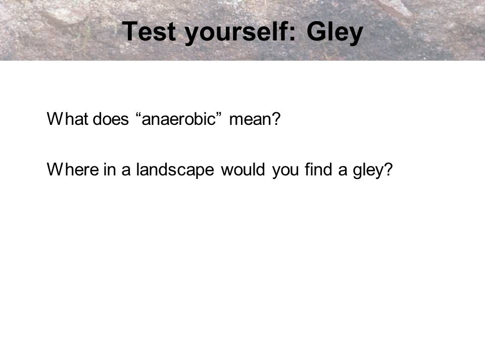 Test yourself: Gley What does anaerobic mean