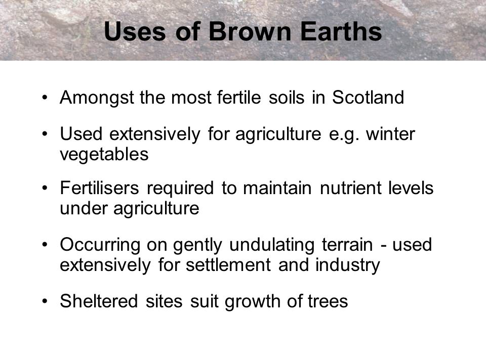 Uses of Brown Earths Amongst the most fertile soils in Scotland