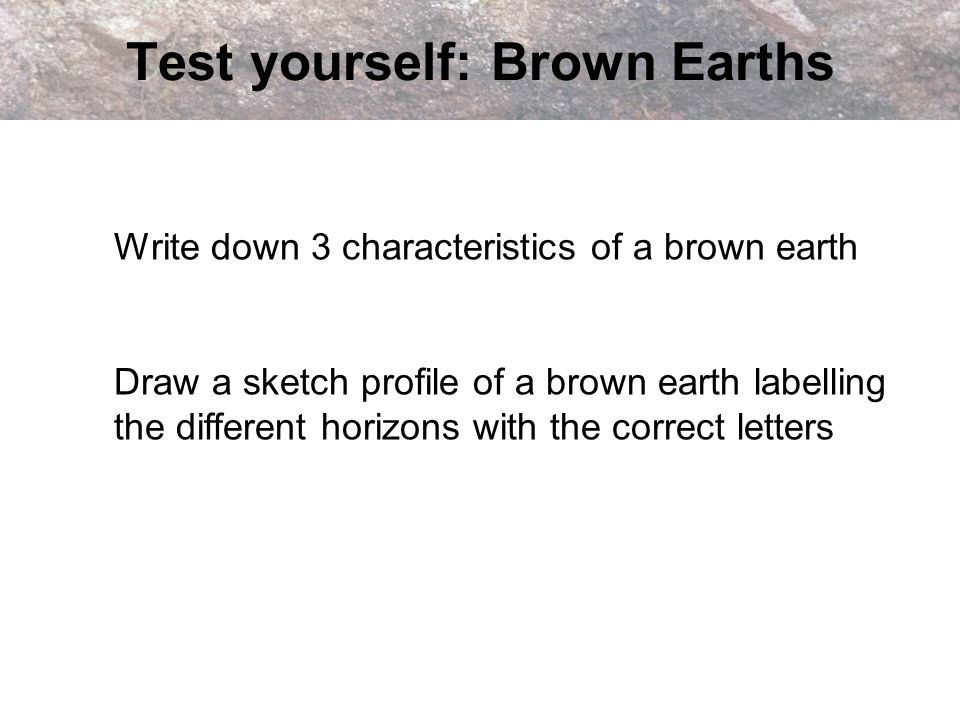Test yourself: Brown Earths