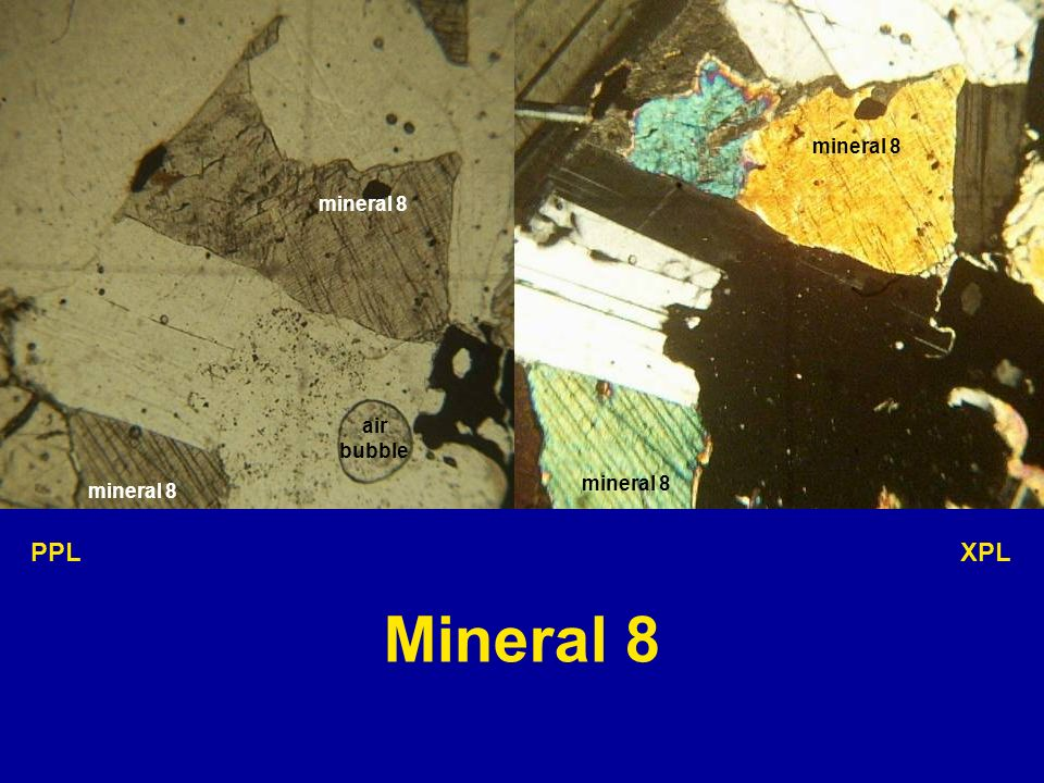 mineral 8 mineral 8 air bubble mineral 8 mineral 8 PPL XPL Mineral 8