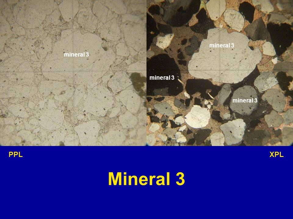 mineral 3 mineral 3 mineral 3 mineral 3 PPL XPL Mineral 3