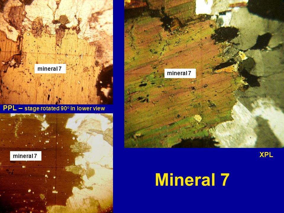 Mineral 7 PPL – stage rotated 90o in lower view XPL mineral 7