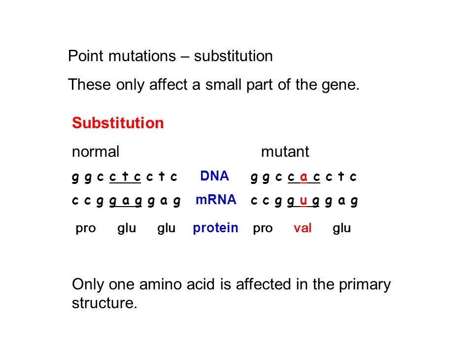 Point mutations – substitution
