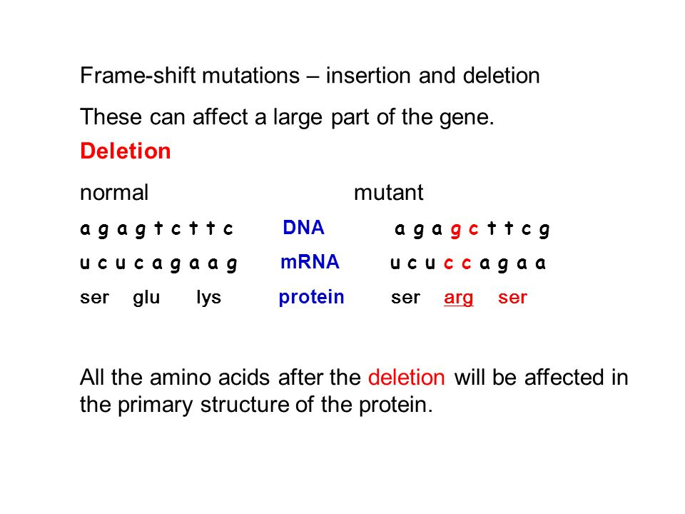 Frame-shift mutations – insertion and deletion