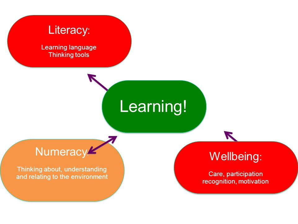 Learning! Thinking! Literacy: Numeracy: Wellbeing: Wellbeing:
