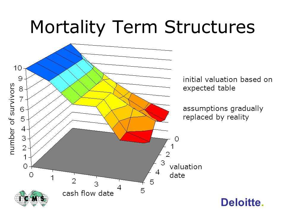 Mortality Term Structures