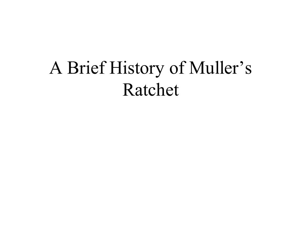 A Brief History of Muller's Ratchet