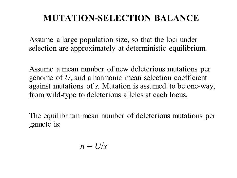 MUTATION-SELECTION BALANCE