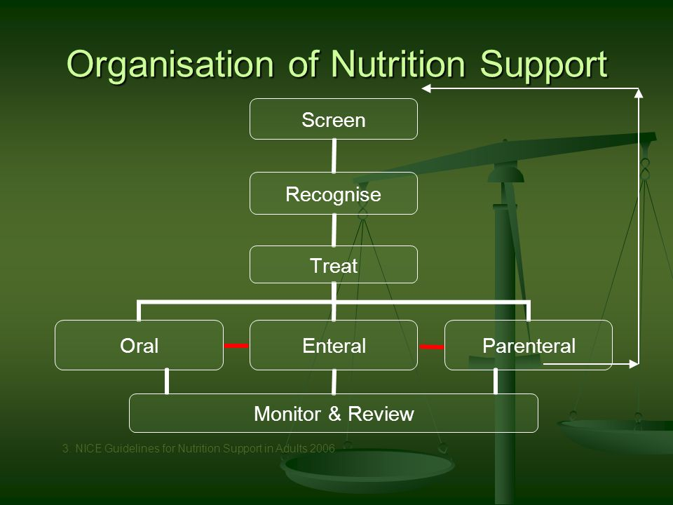 Organisation of Nutrition Support