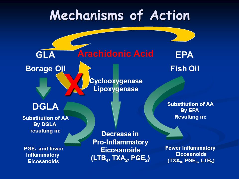 Cyclooxygenase Lipoxygenase