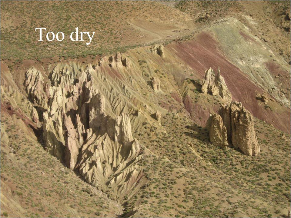 Too dry