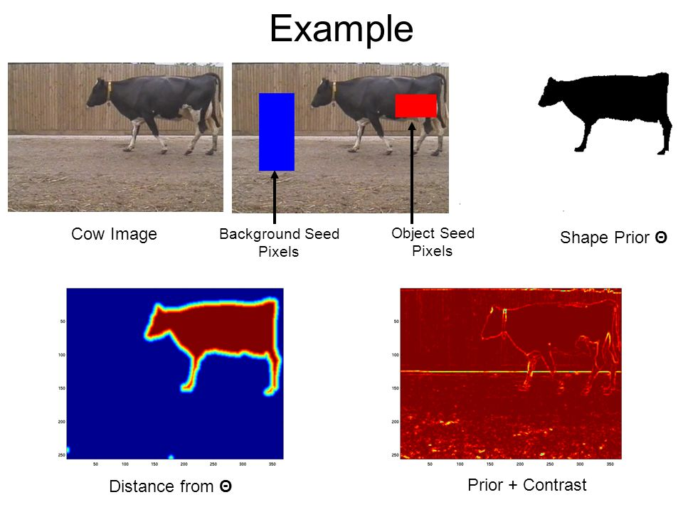 Example Cow Image Shape Prior Θ Distance from Θ Prior + Contrast