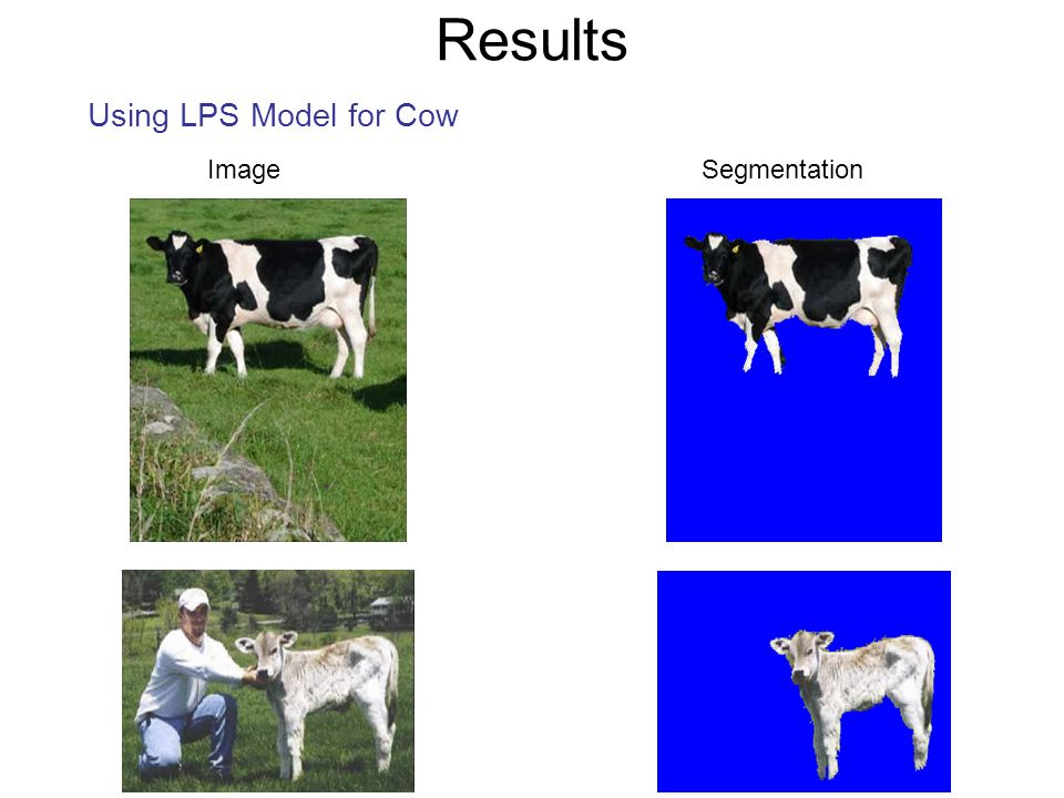 Results Using LPS Model for Cow Image Segmentation