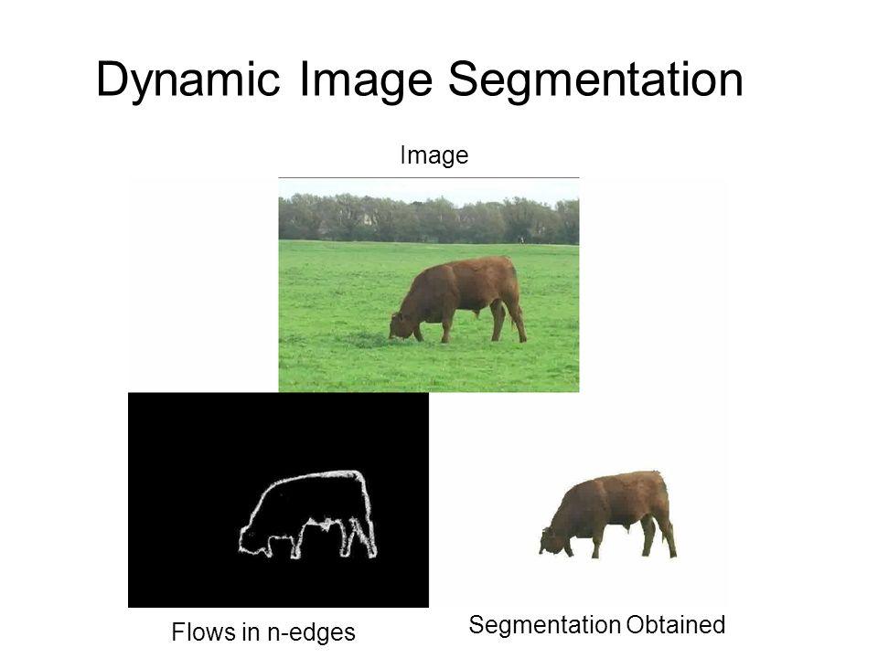 Dynamic Image Segmentation