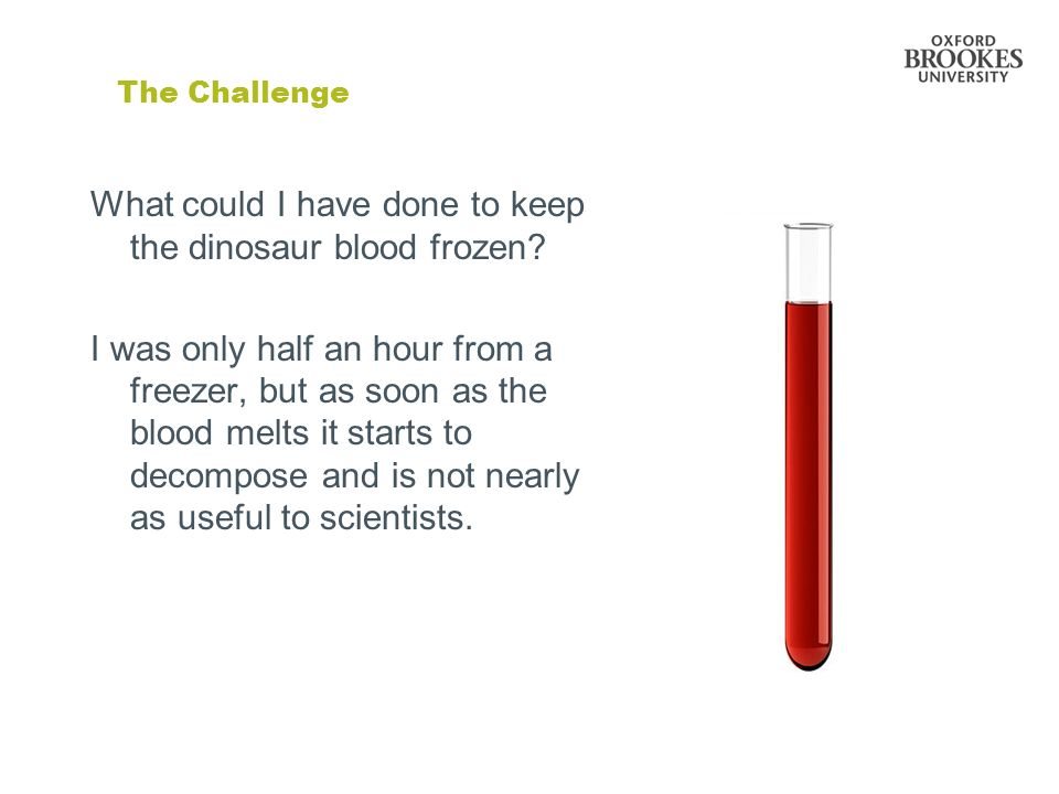 What could I have done to keep the dinosaur blood frozen