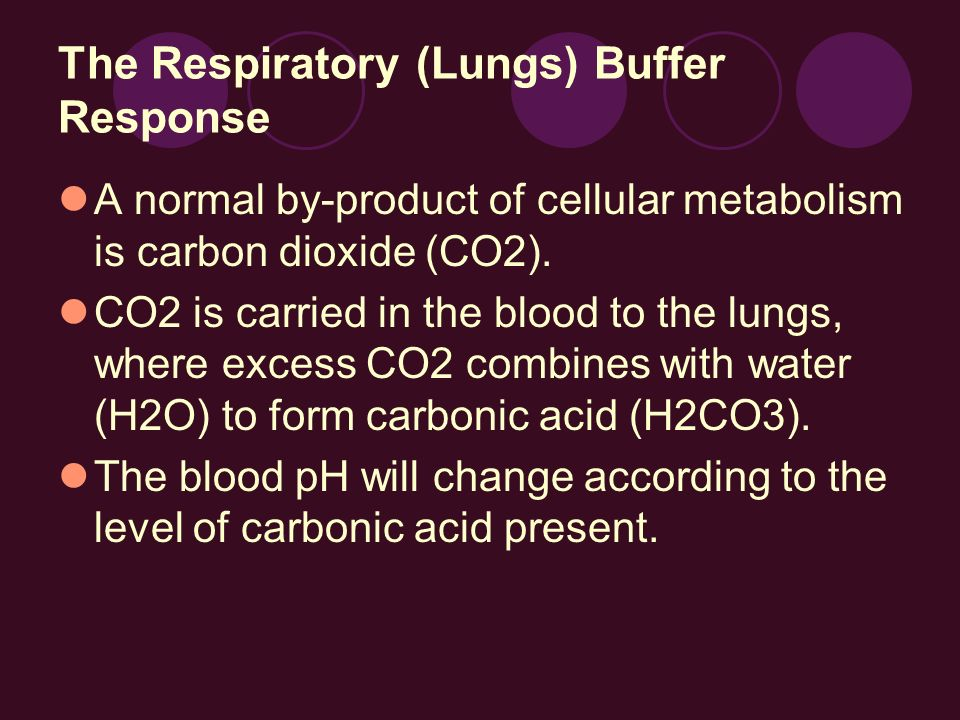 The Respiratory (Lungs) Buffer Response