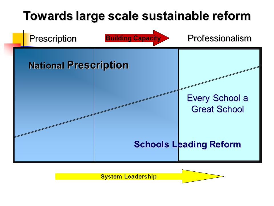 Towards large scale sustainable reform