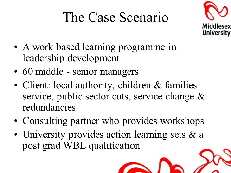 The Case Scenario A work based learning programme in leadership development. 60 middle - senior managers.