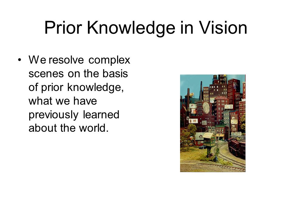 Prior Knowledge in Vision