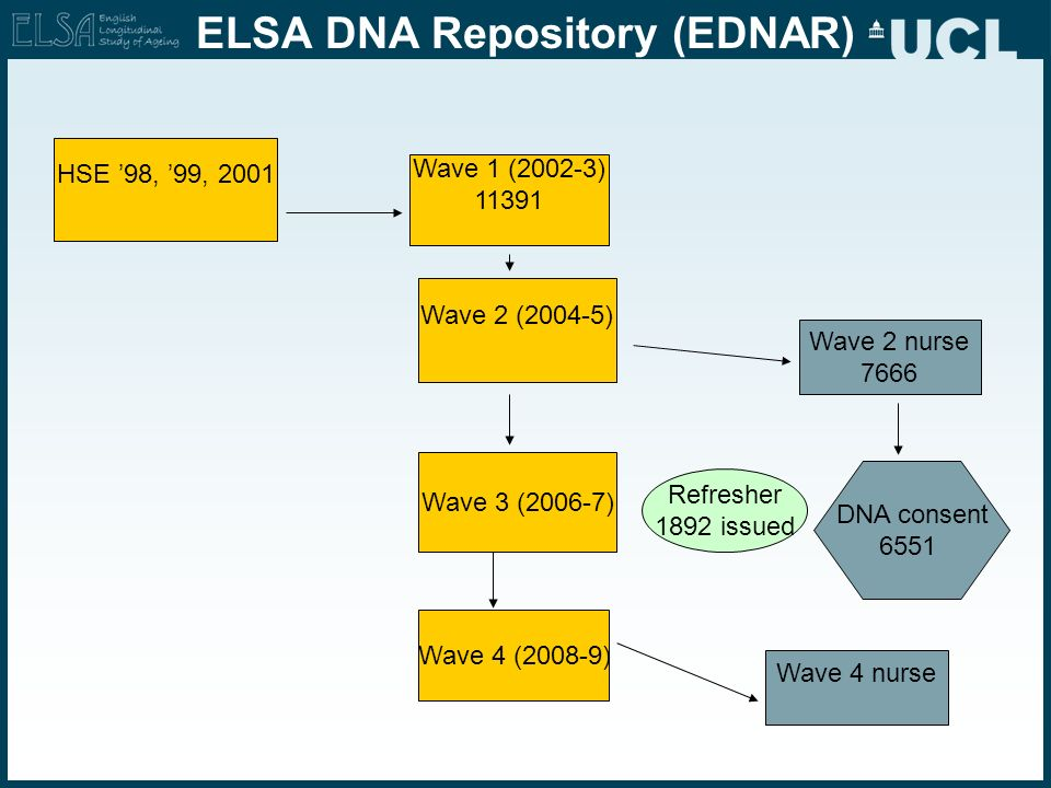 ELSA DNA Repository (EDNAR)