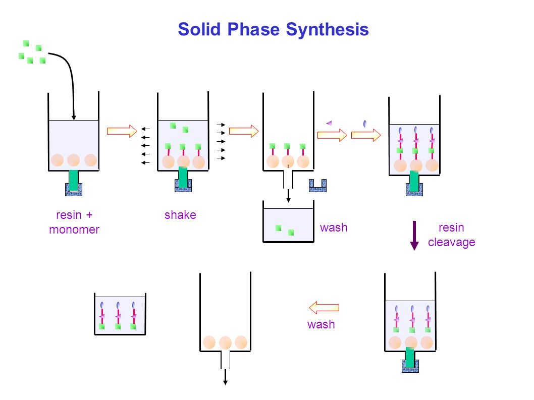 Solid-phase synthesis