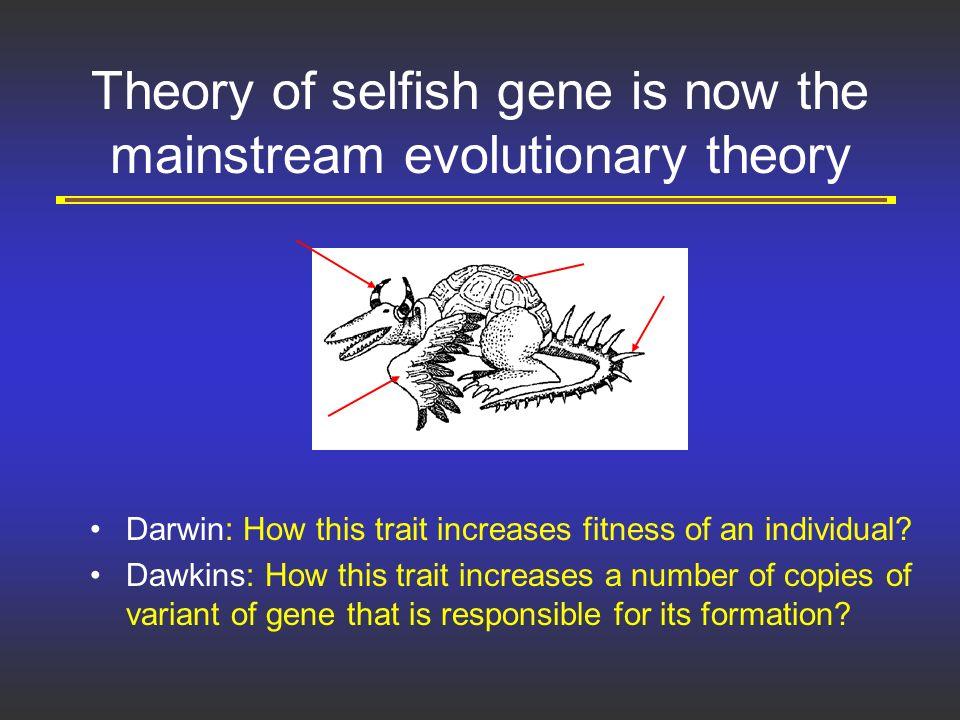 the selfish gene theory philosophy essay In this paper his main argument is investigated and critizised from a philosophy of  get custom essay sample written  the selfish gene theory.