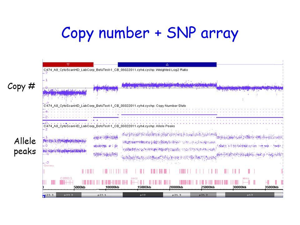 snp array