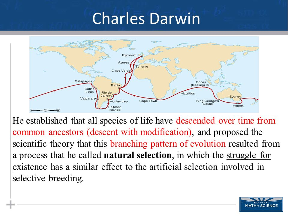 charles darwins theory of evolution and its impact on natural and sexual selection How does darwin's theory of natural selection differ from the contemporary conception of evolution  theory of evolution by natural selection  sexual selection.