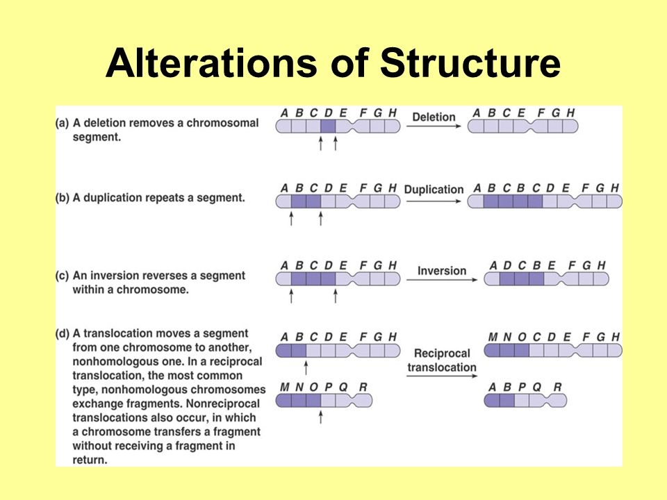 Alterations of Structure