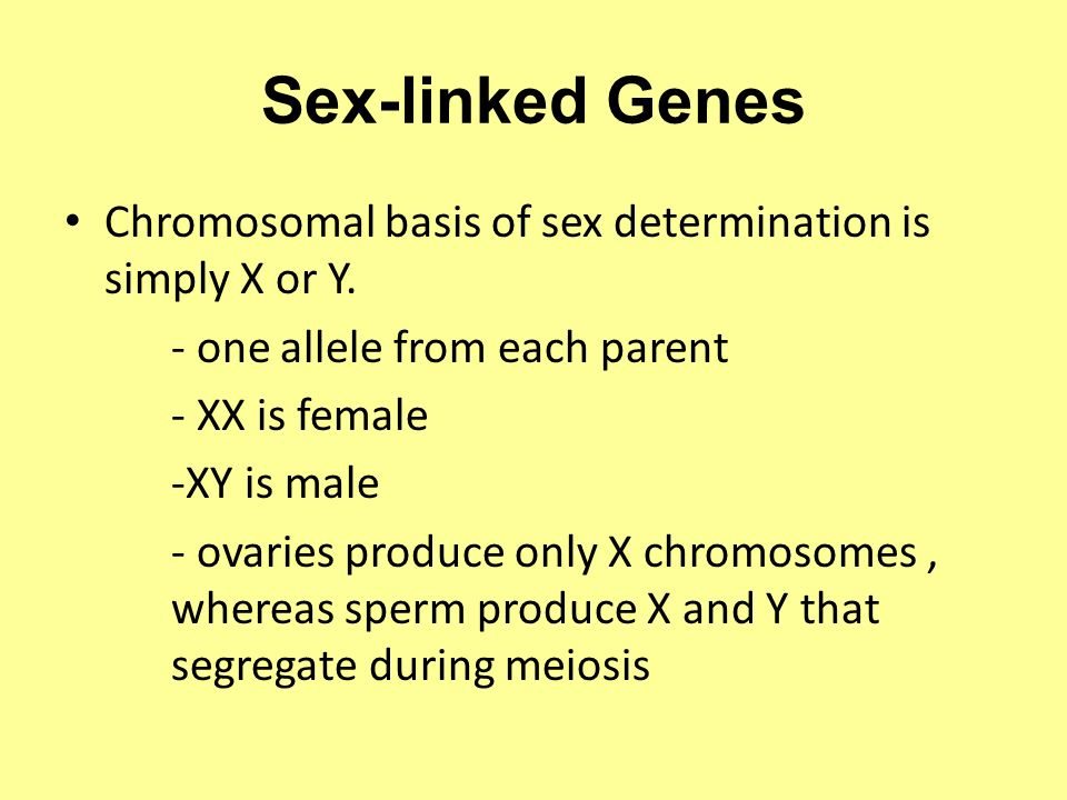 Sex-linked Genes Chromosomal basis of sex determination is simply X or Y. - one allele from each parent.