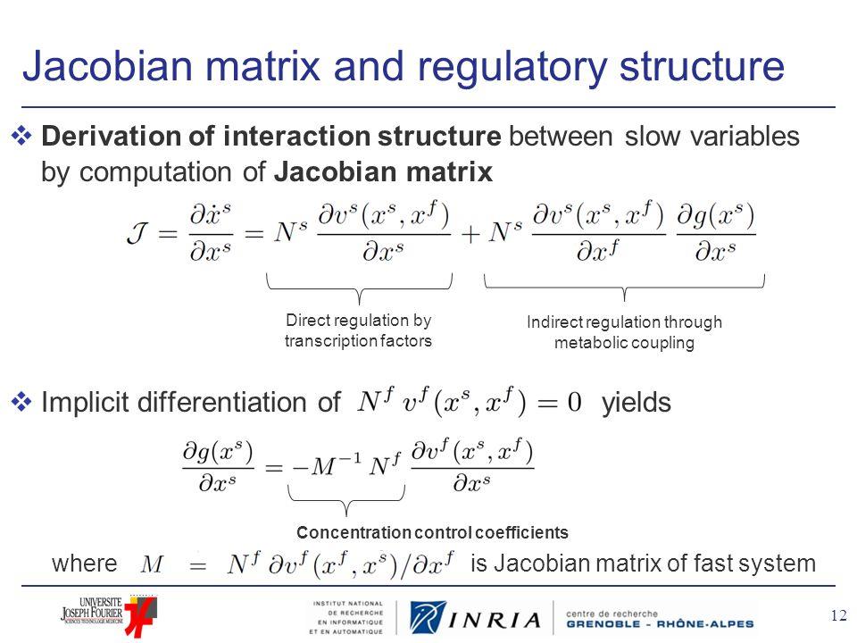 Jacobian matrix and regulatory structure