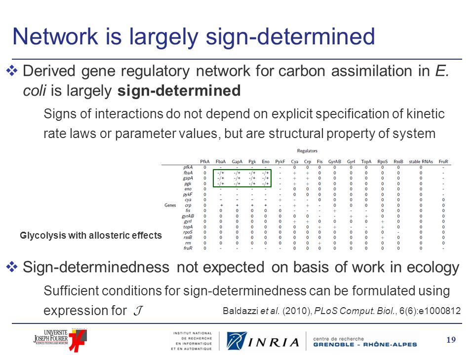 Network is largely sign-determined