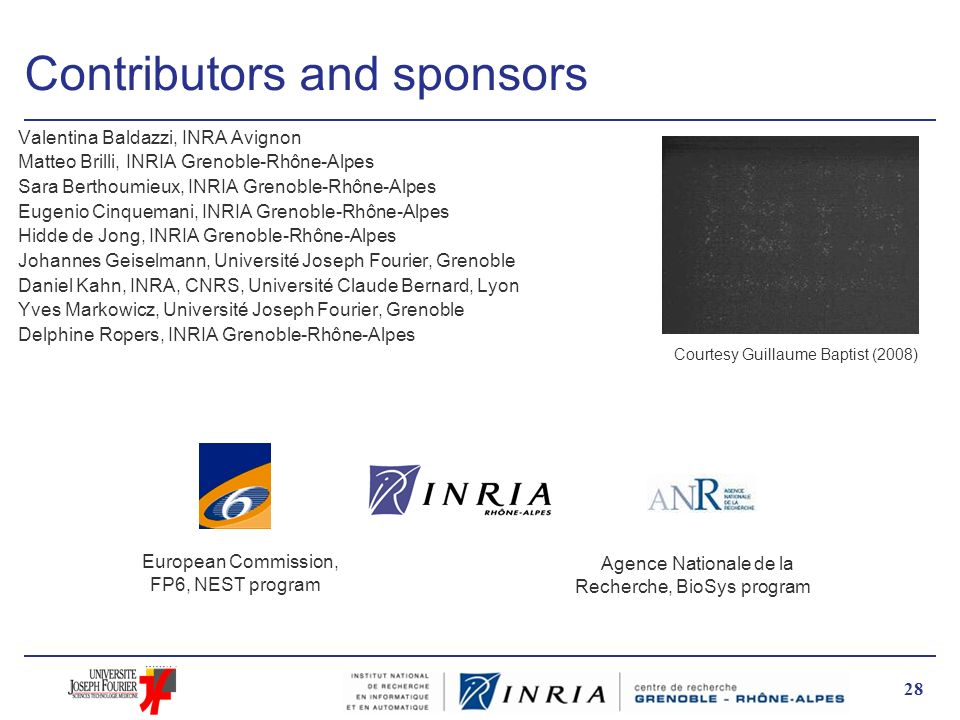 Contributors and sponsors