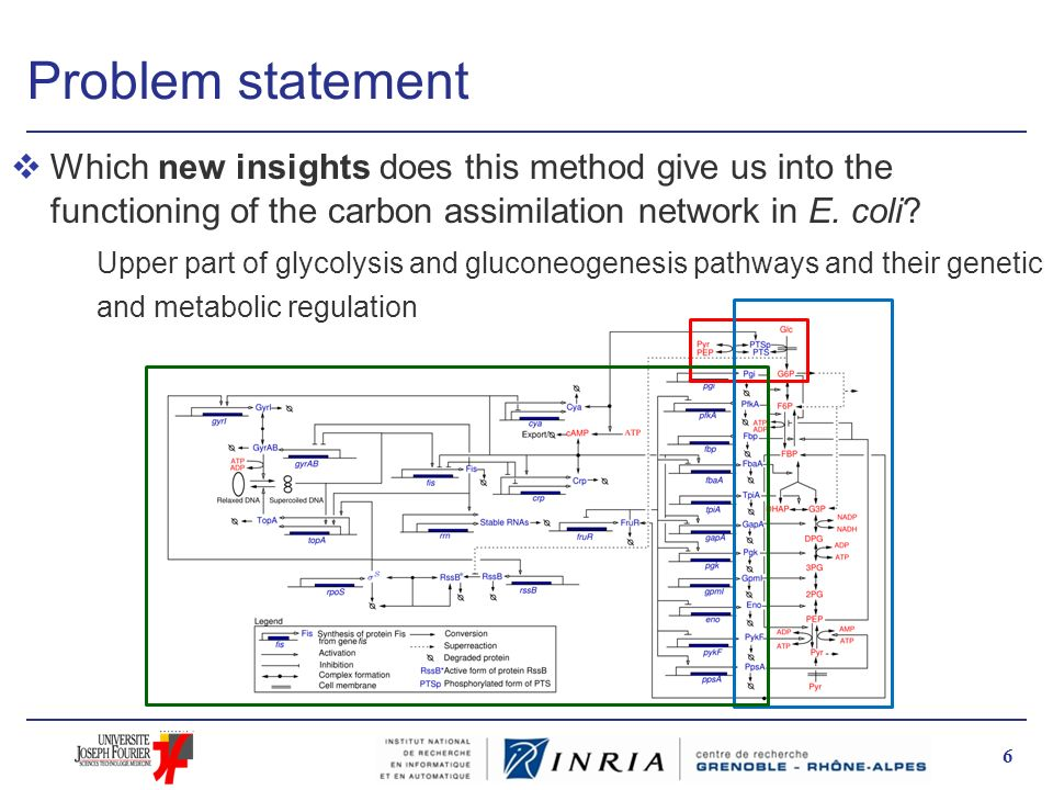 Problem statement Which new insights does this method give us into the functioning of the carbon assimilation network in E. coli
