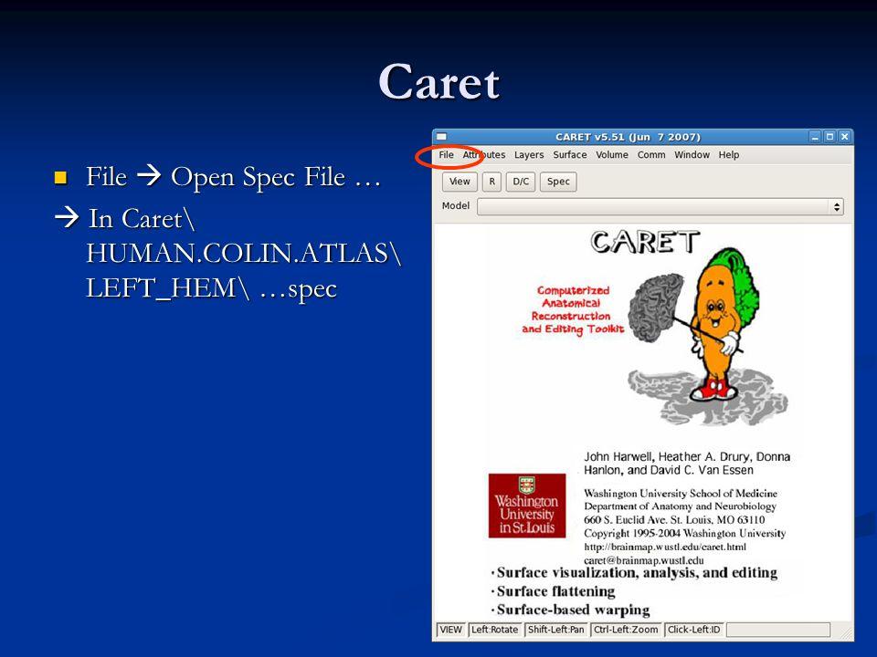 Caret File  Open Spec File …
