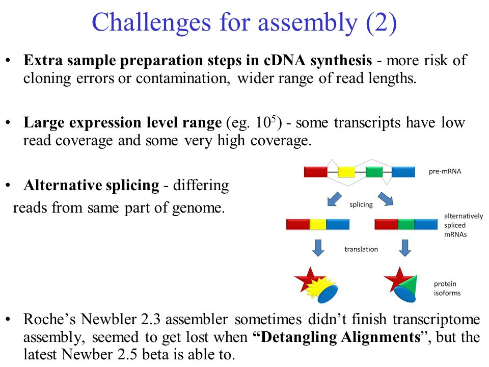 Challenges for assembly (2)