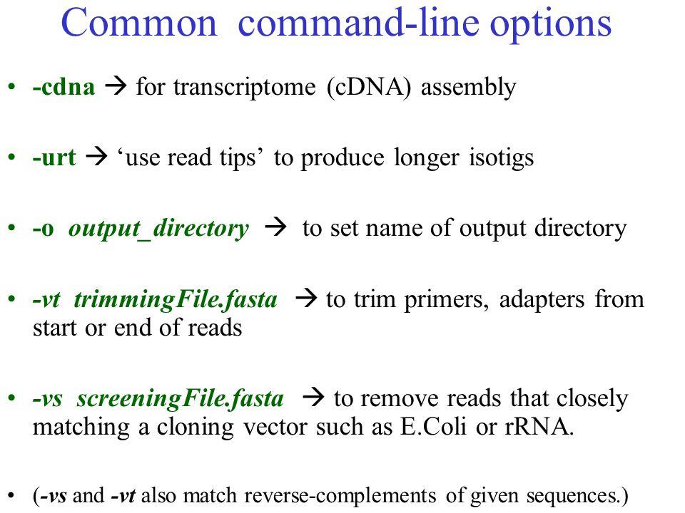 Common command-line options