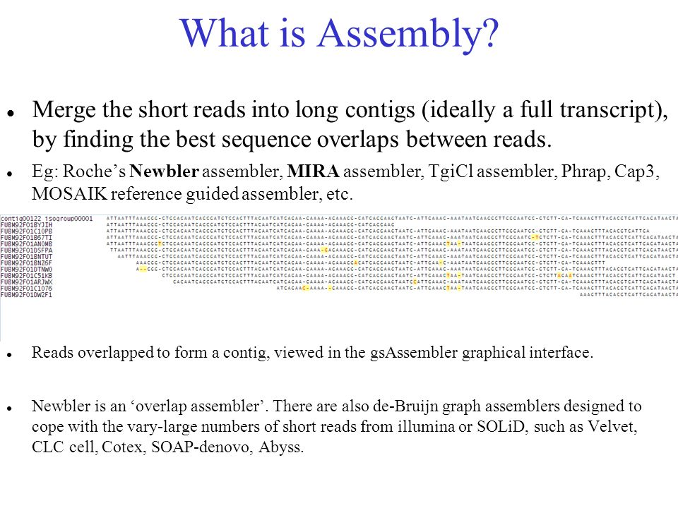 What is Assembly Merge the short reads into long contigs (ideally a full transcript), by finding the best sequence overlaps between reads.