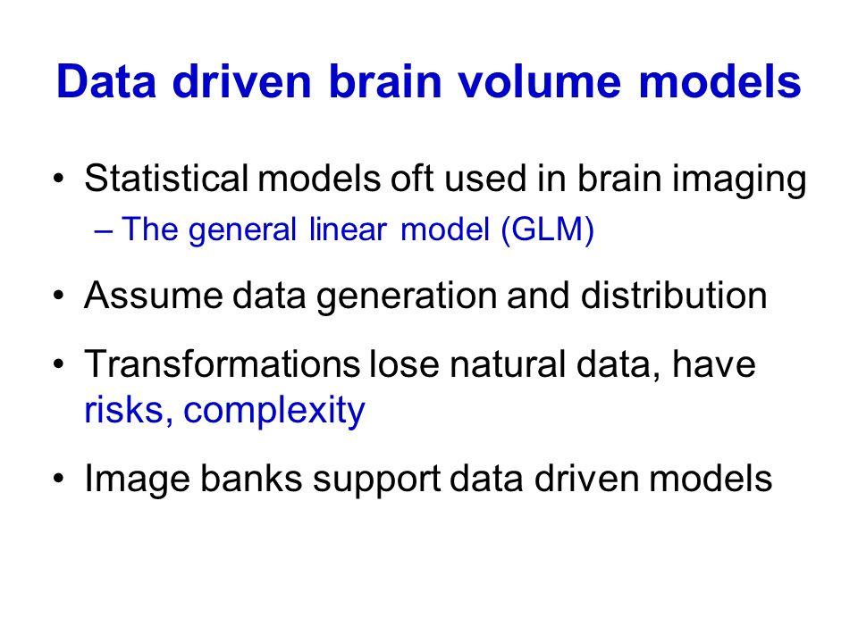 Data driven brain volume models