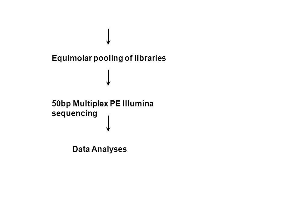 Equimolar pooling of libraries