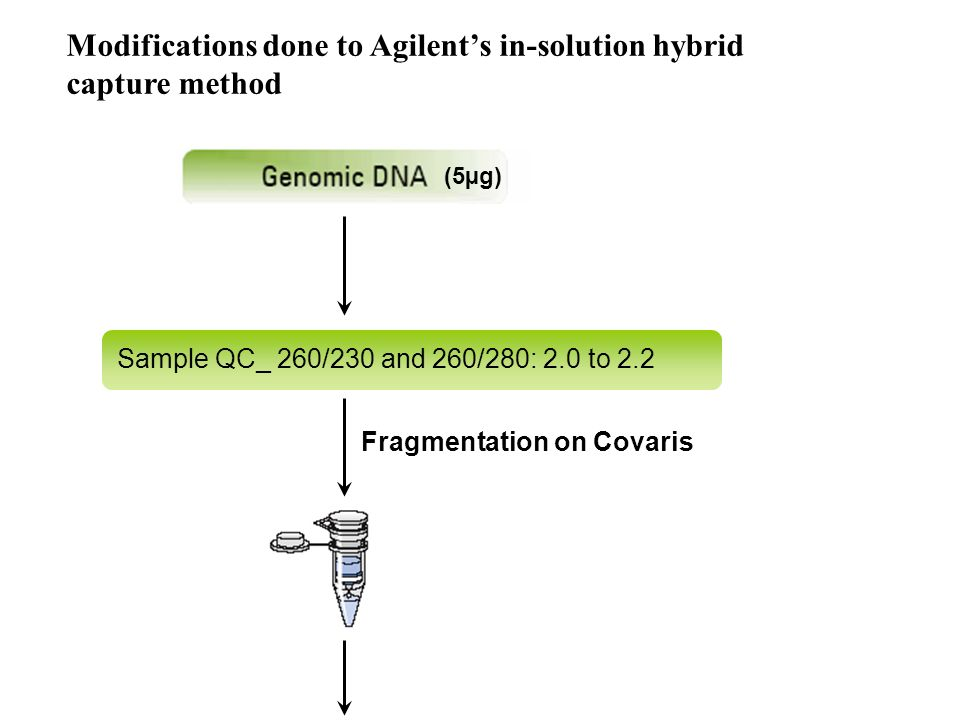 Modifications done to Agilent's in-solution hybrid capture method