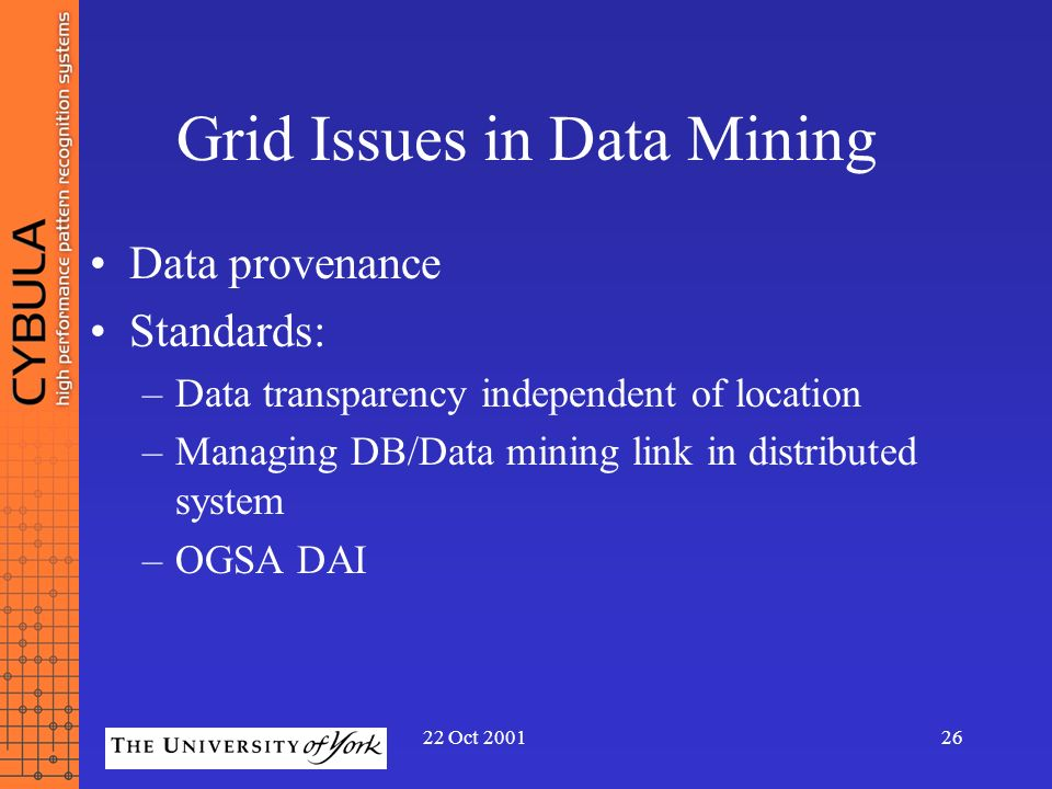 Grid Issues in Data Mining