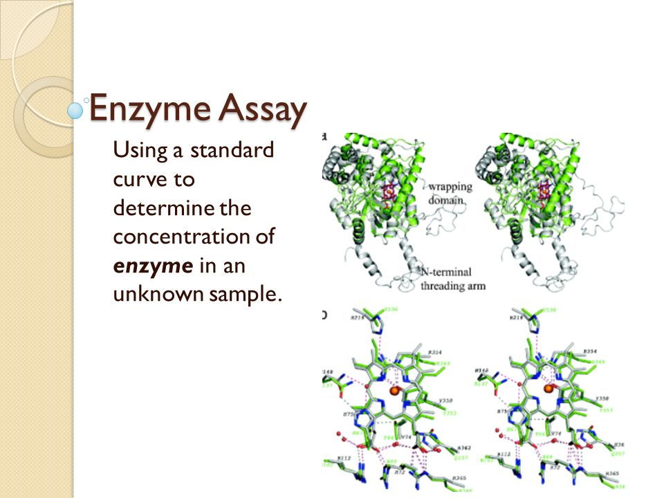 enzyme assay drug test Heroin abuse is monitored by testing urine samples for its principal  the  development of a linked-enzyme assay for heroin and its metabolites: heroin  esterase,.