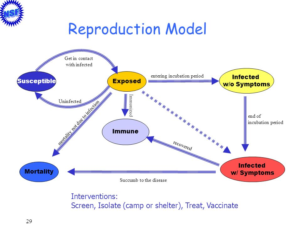 Reproduction Model Interventions: