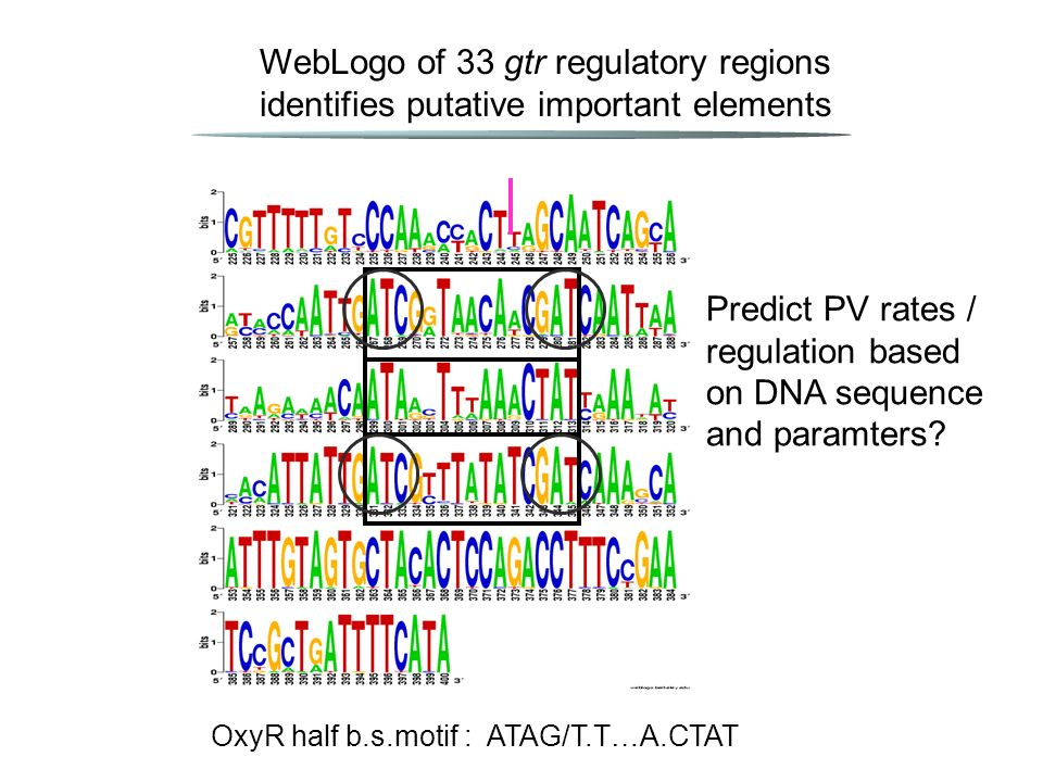 Predict PV rates / regulation based on DNA sequence and paramters