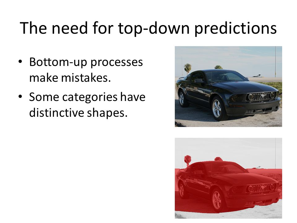 The need for top-down predictions