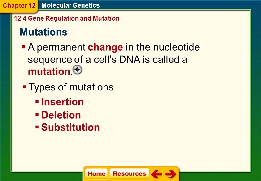 Molecular Genetics Worksheet : Chapter molecular genetics worksheet answers