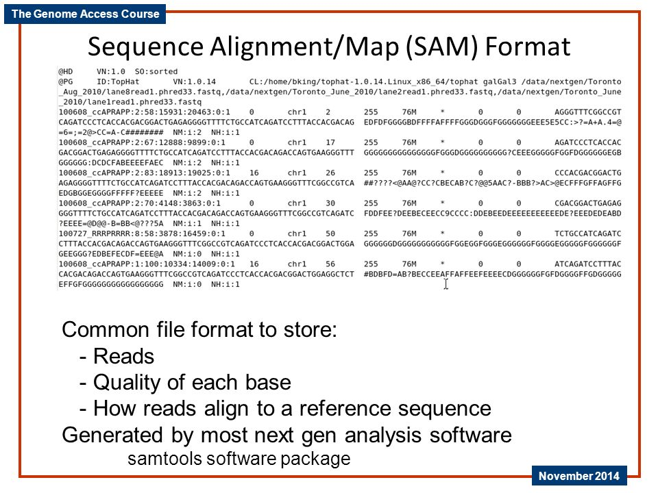 Sequence Alignment/Map (SAM) Format