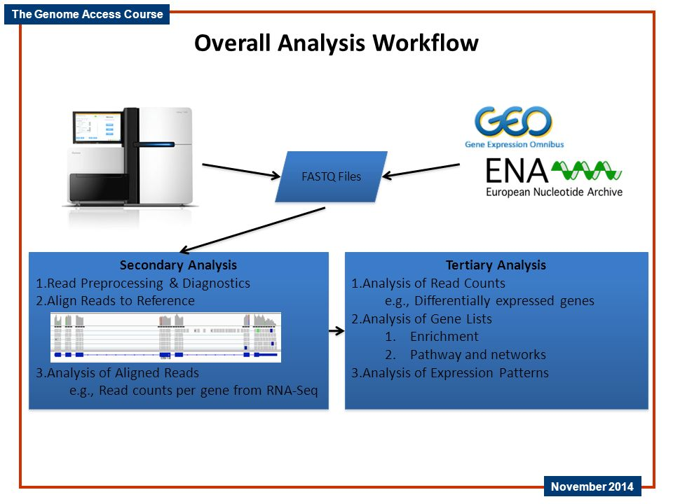 Overall Analysis Workflow